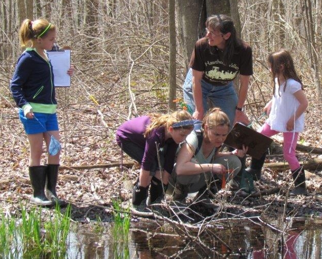 Vernal pool exploration