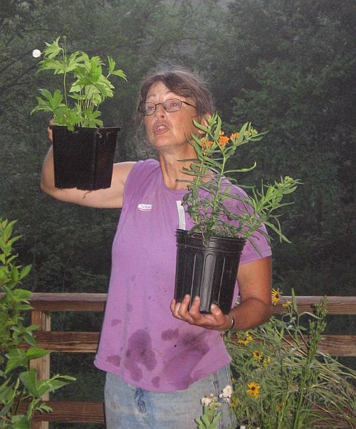Judy Sullivan with native plant examples