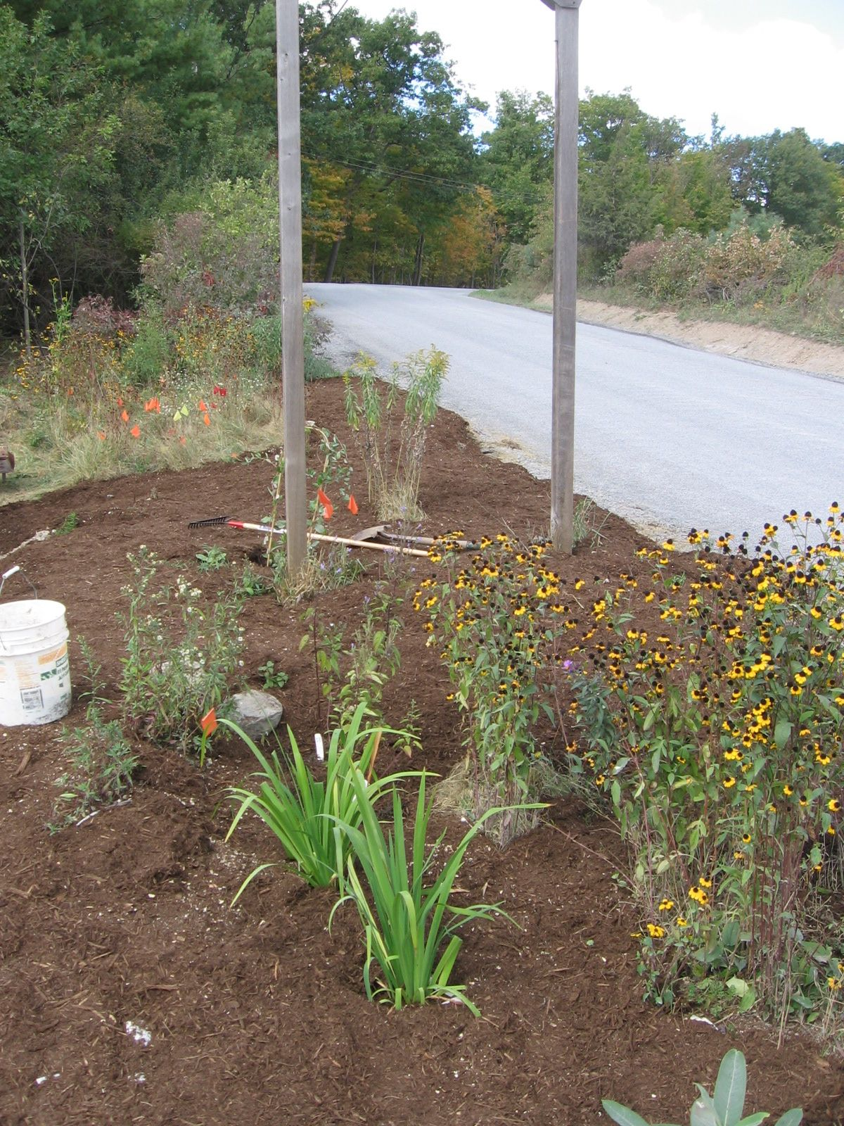 Roadside Garden covered with mulch.