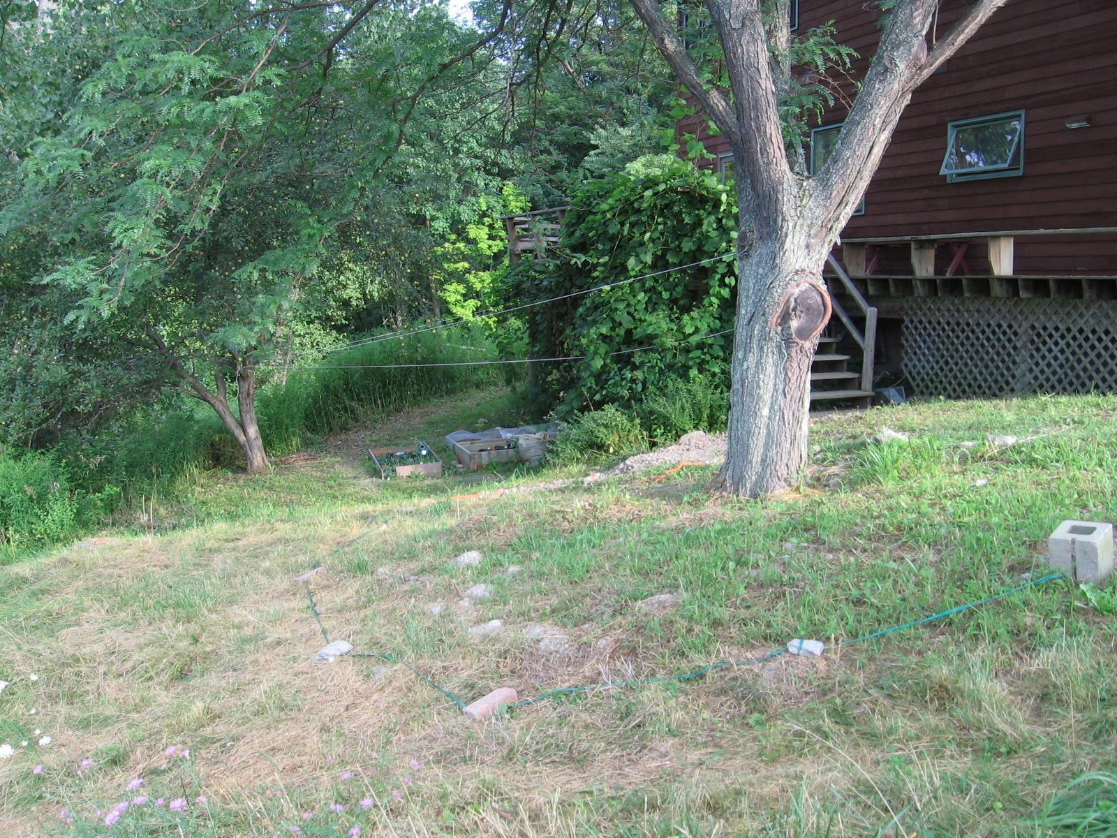 Shade Garden Aug 2011