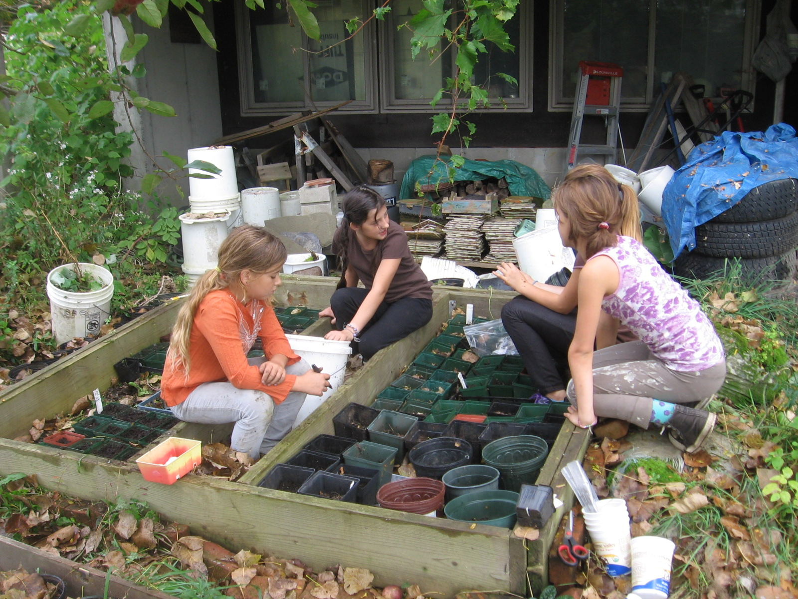 Small-scale Native Plant Nursery at the Creekhouse