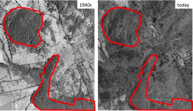 Historical Aerial Photos Farmscape Ecology Program - Historical aerial maps