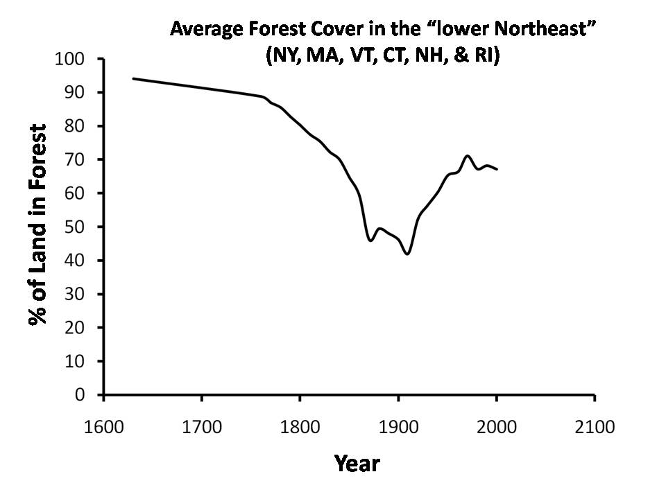 Average Forest Cover