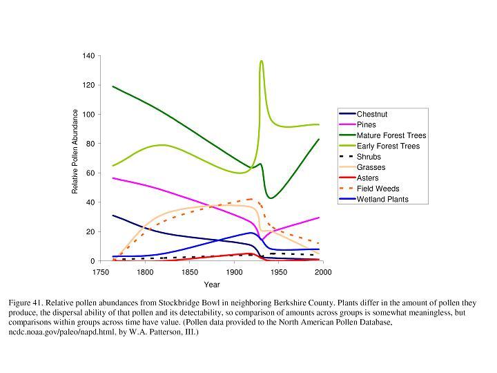 pollen graph